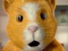 keyvis_detur_hamster_spot1_still002